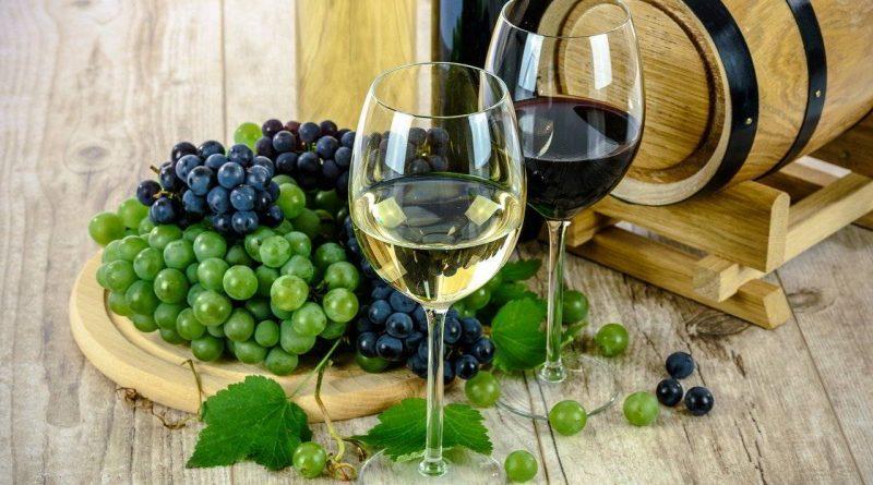 vinogradništvo